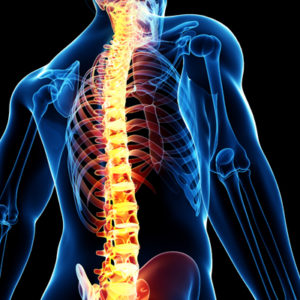 Chiropractors Online Joint and Back Pain