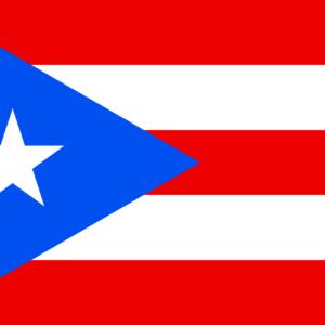 Puerto Rico Chiropractic Online