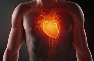 Congestive Heart Failure Course
