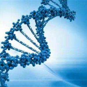 Pharmacogenetics Chiropractic CE Course